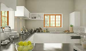 sridhar-kitchen-view-3